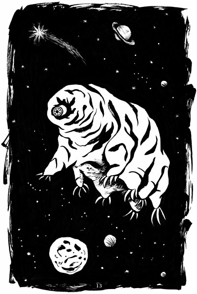 Flying tardigrade from the Dark Sky Park